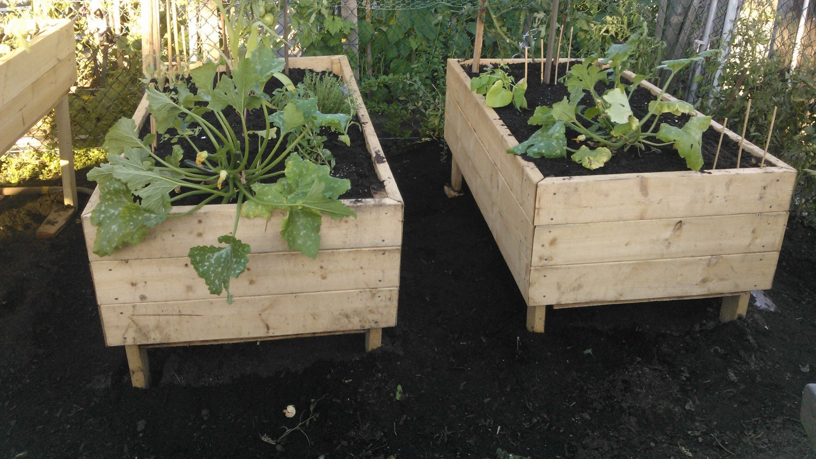 elevated beds